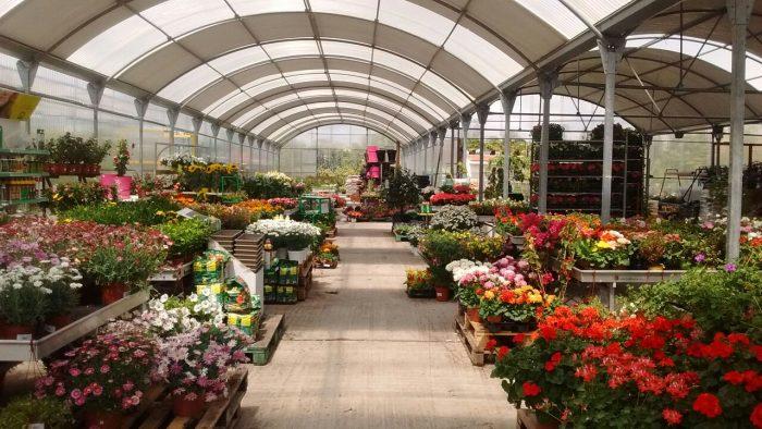 Centro de jardiner a vernatura vernatura for Centro de jardineria